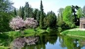 6939460_kornik-arboretum-magnolie-pokazaly-sie-w-calej-okazalosci