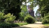 arboretum-park-kornik-galeria-1
